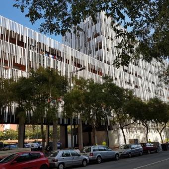 Maheco y aid palmes ponen en marcha un proyecto de for Piscina xarau cerdanyola